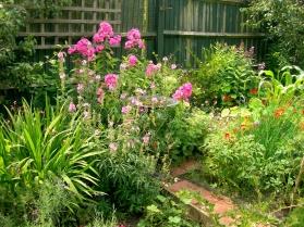 garden july 2014 006